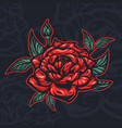 colored rose flower vector image