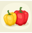 Stylized of fresh ripe peppers vector image vector image
