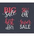 Sale Inscriptions set vector image
