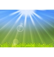 Abstract summer sunlight background vector image vector image