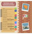 Bosnia and Herzegovina infographics statistical vector image vector image