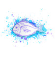 fish on a blue background vector image