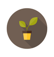 Pot with green plant flat icon vector image vector image