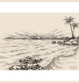 sunrise on the beach drawing sea view and palm vector image vector image