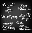 a set of beautiful lettering vector image
