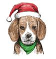 beagle hat1 vector image vector image