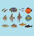 beautiful aquarium fishes collection vector image vector image