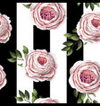 pink english roses seamless pattern vector image vector image