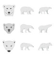 polar bear baby white icons set flat style vector image vector image