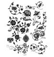 set of design floral elements vector image vector image