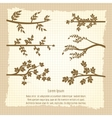 Vintage poster with tree branches silhouette vector image vector image