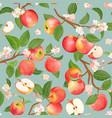 watercolor blooming apple seamless pattern vector image