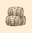 wood old barrel vector image vector image