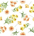 Watercolor seamless pattern with echinacea flowers vector image