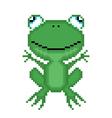 pixel frog vector image