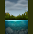 an underwater nature landscape vector image vector image