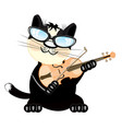 cat plays on violin vector image vector image