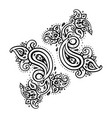 paisley ethnic ornament vintage set vector image vector image