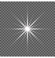 Shining star Glow spot vector image vector image