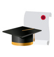 graduation cap and diploma college degree vector image vector image