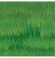 grass seaml 380 vector image vector image