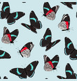 Pattern with high detailed vivid butterfly