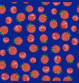 raspberry and cranberry on a blue background vector image vector image