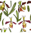 seamless pattern with beautiful exotic orchid vector image vector image