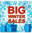 Big winter sale poster with BIG WINTER SALE text vector image vector image