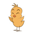 cute little chick baby animal bird cartoon vector image vector image