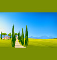 italian panorama rural countryside in spring or vector image