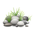 Stones and green grass vector image