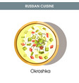cold okroshka with leek and dill from russian vector image vector image