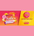 hot summer sale banner special offer vector image vector image