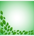 natural frame for a card of realistic green leaves vector image vector image