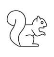 squirrel linear icon vector image