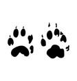 stone marten footprint vector image vector image