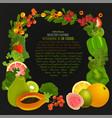 vitamin c image vector image vector image
