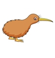 Kiwi bird cartoon vector image