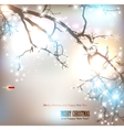 elegant nature background vector image