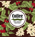 banner with coffee plant coffee beans and vector image vector image
