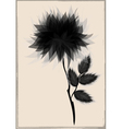 beautiful black flower surrounded vector image vector image