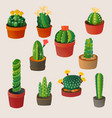 cute cartoon cactus home plant nature vector image vector image