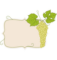 grapes with frame vector image vector image
