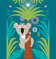 koala on palm tree vector image vector image