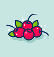 cherry and leaves simple packaging vector image