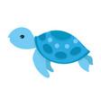 sea turtle cartoon vector image vector image