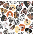 seamless pattern dogs vector image vector image