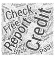check credit free score Word Cloud Concept vector image vector image
