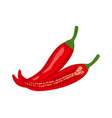 colorful whole and half red hot chili pepper vector image vector image